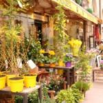 【マーケティング施策のヒント】花屋さんがリピート率を圧倒的に上げる方法。(思いつき)